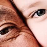 Invertire l'orologio dell'invecchiamento biologico: il ruolo chiave della nutrigenetica secondo il Prof. Scapagnini