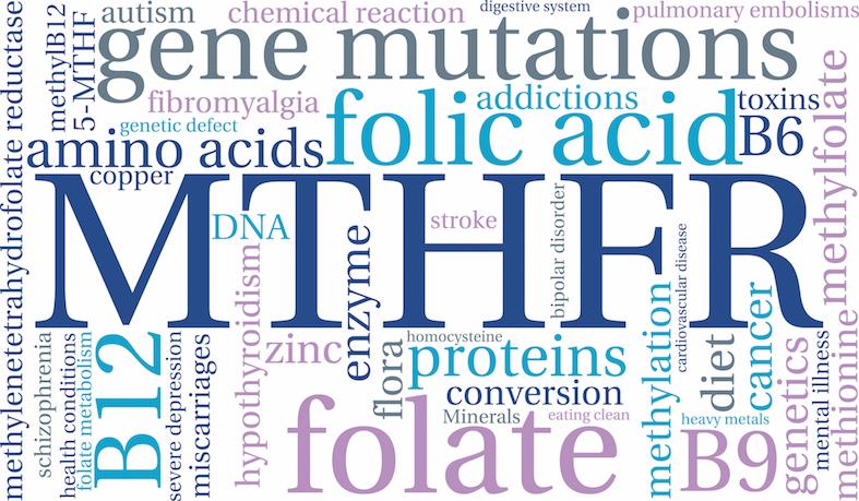 Omocisteina: i fattori genetici che ne influenzano la concentrazione plasmatica